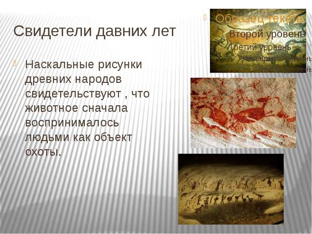 Свидетели давних лет Наскальные рисунки древних народов свидетельствуют , что...