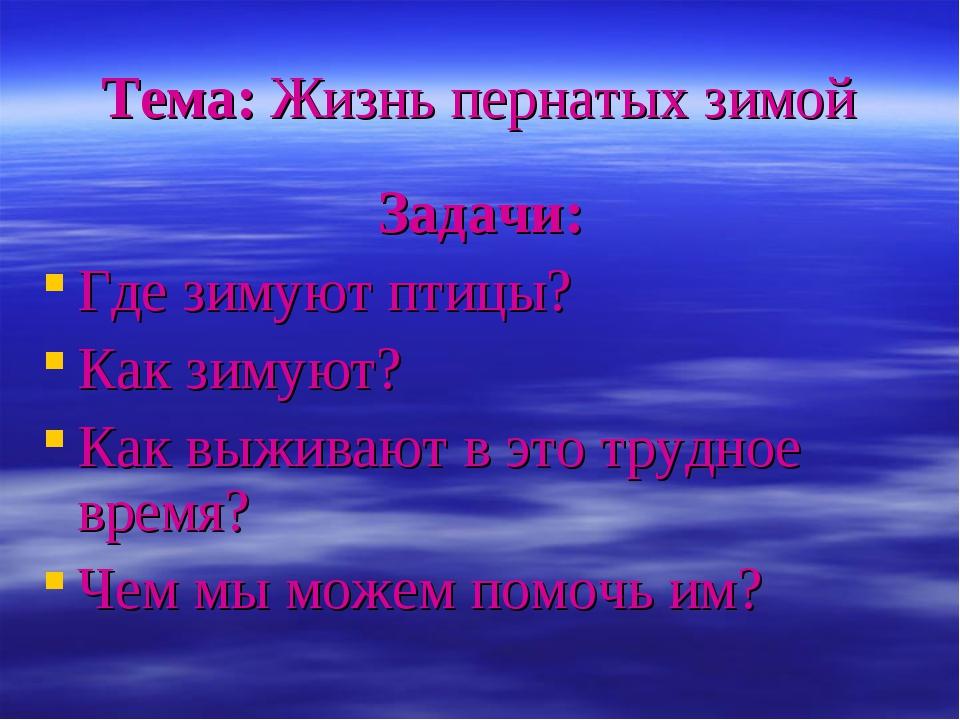 Тема: Жизнь пернатых зимой Задачи: Где зимуют птицы? Как зимуют? Как выживают...