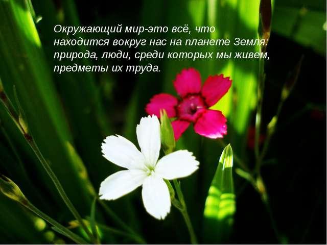 Окружающий мир-это всё, что находится вокруг нас на планете Земля: природа, л...