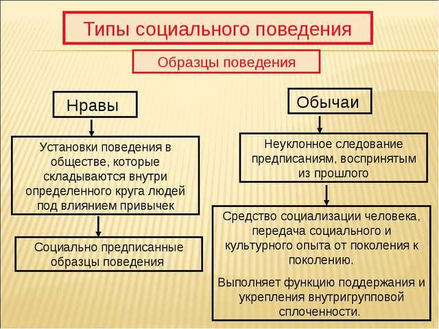 Типы социального поведения Образцы поведения Нравы Обычаи Установки поведения...