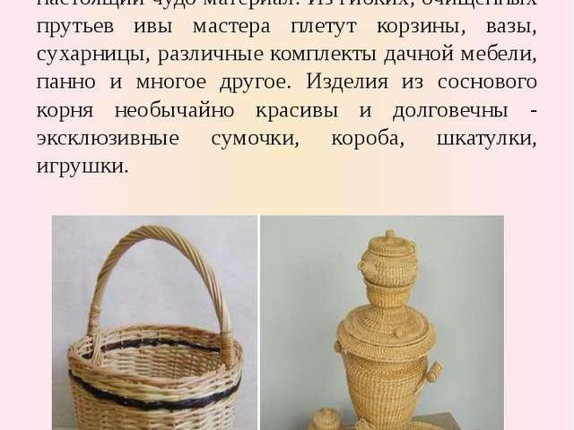 Плетение из лозы и корня сосны Ивовые прутья (лоза) и сосновый корень настоя...