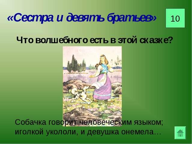 «Сестра и девять братьев» 10 Что волшебного есть в этой сказке? Собачка говор...