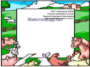Животноводство МОУ «Чисмеская ООШ» Учитель начальных классов Гордеева Маргари