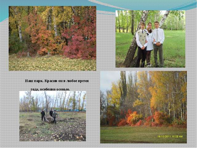 Наш парк. Красив он в любое время года, особенно осенью.