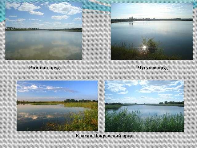 Красив Покровский пруд Клишин пруд Чугунов пруд