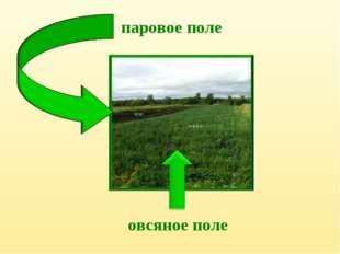 паровое поле овсяное поле