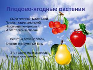 Плодово-ягодные растения Была зеленой, маленькой, Потом я стала аленькой. На