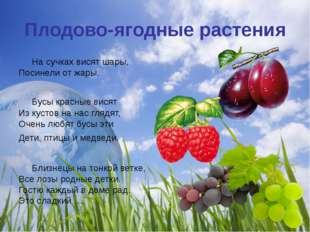 Плодово-ягодные растения На сучках висят шары, Посинели от жары. Бусы красн