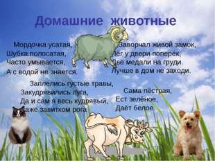 Домашние животные Мордочка усатая, Шубка полосатая, Часто умывается, А с водо