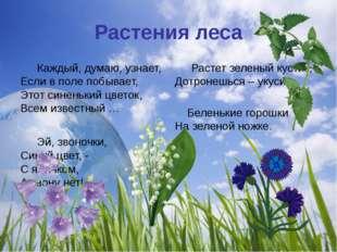 Растения леса Каждый, думаю, узнает, Если в поле побывает, Этот синенький цв