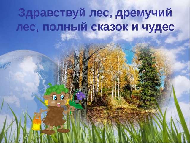 Здравствуй лес, дремучий лес, полный сказок и чудес