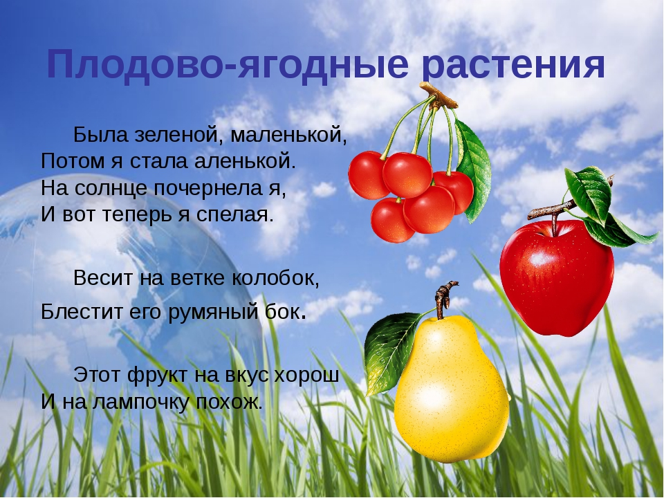 Плодово-ягодные растения Была зеленой, маленькой, Потом я стала аленькой. На...