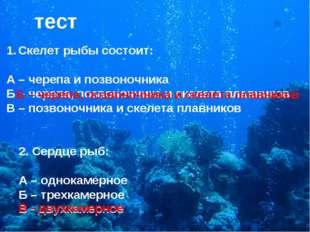 тест Скелет рыбы состоит: А – черепа и позвоночника Б – черепа, позвоночника