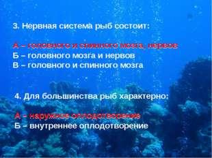3. Нервная система рыб состоит: А – головного и спинного мозга, нервов Б – го
