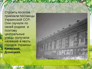 Строить посёлок приехали посланцы Украинской ССР. Они скучали по своей родине