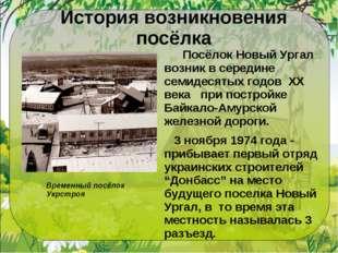 История возникновения посёлка  Посёлок Новый Ургал возник в середине семидес