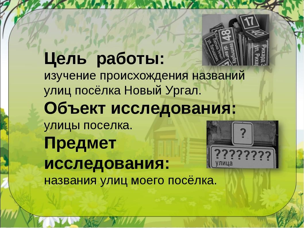 Цель работы: изучение происхождения названий улиц посёлка Новый Ургал. Объект...