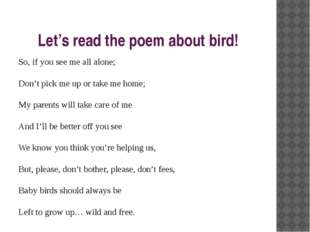 Let's read the poem about bird! So, if you see me all alone; Don't pick me up