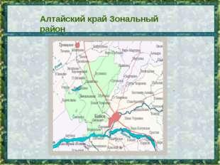 . Алтайский край Зональный район