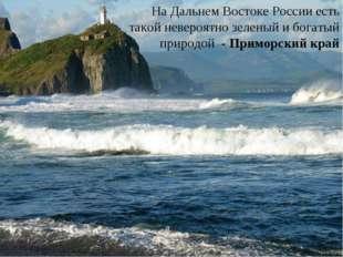 На Дальнем Востоке России есть такой невероятно зеленый и богатый природой