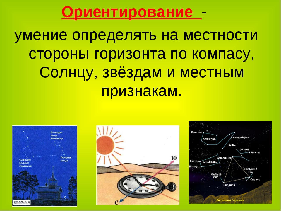 Ориентирование - умение определять на местности стороны горизонта по компасу,...