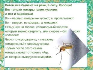 Летом все бывают на реке, в лесу. Хорошо! Вот только комары такие кусачие. А