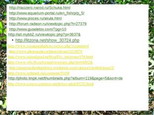 http://naozero.narod.ru/Schuka.html http://www.aquarium-portal.ru/en_fish/p/p