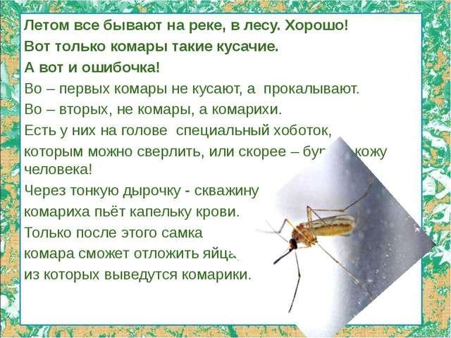 Летом все бывают на реке, в лесу. Хорошо! Вот только комары такие кусачие. А...