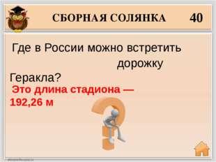 СБОРНАЯ СОЛЯНКА 40 Это длина стадиона — 192,26 м Где в России можно встретит