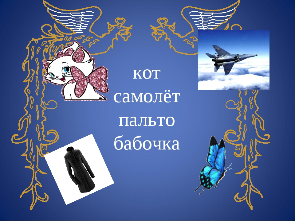 кот самолёт пальто бабочка