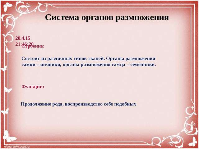 Интернет – ресурсы: http://s1.pic4you.ru/allimage/y2012/10-18/12216/2569513.p...