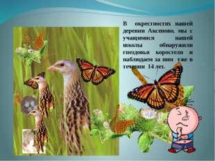 . В окрестностях нашей деревни Аксеново, мы с учащимися нашей школы обнаружи