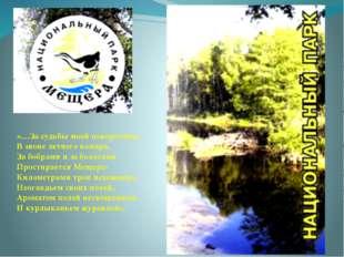 «…За судьбы моей поворотами, В звоне летнего комара, За бобрами и за болотам