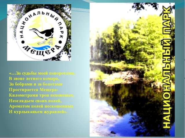 «…За судьбы моей поворотами, В звоне летнего комара, За бобрами и за болотам...