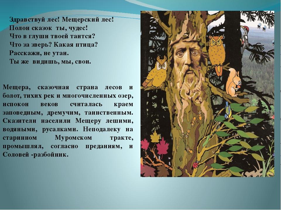 . Здравствуй лес! Мещерский лес! Полон сказок ты, чудес! Что в глуши твоей т...