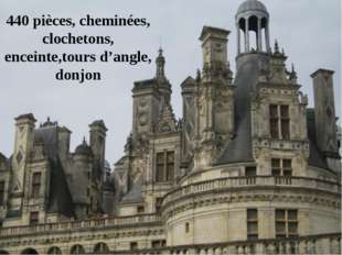 440 pièces, cheminées, clochetons, enceinte,tours d'angle, donjon
