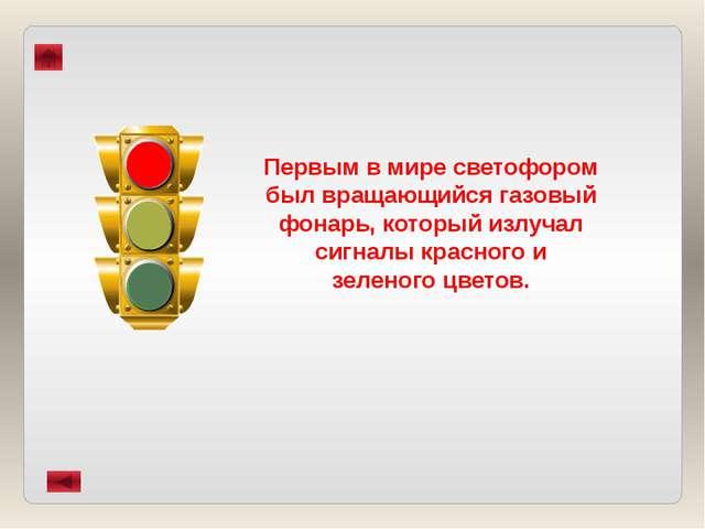 Автор проекта – Мария Останина, учащаяся 6 класса МБОУ «СОШ №18» г. Воткинска...