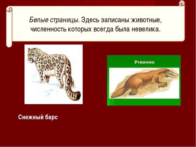 Снежный барс Белые страницы. Здесь записаны животные, численность которых все...
