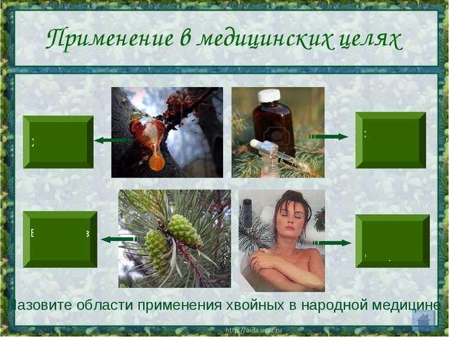 Применение в медицинских целях Назовите области применения хвойных в народной...