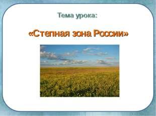 «Степная зона России»