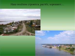 Наш посёлок строится, растёт, хорошеет…