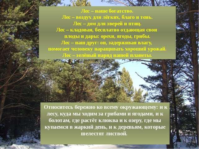 Лес – наше богатство. Лес – воздух для лёгких, благо и тень. Лес – дом для зв...