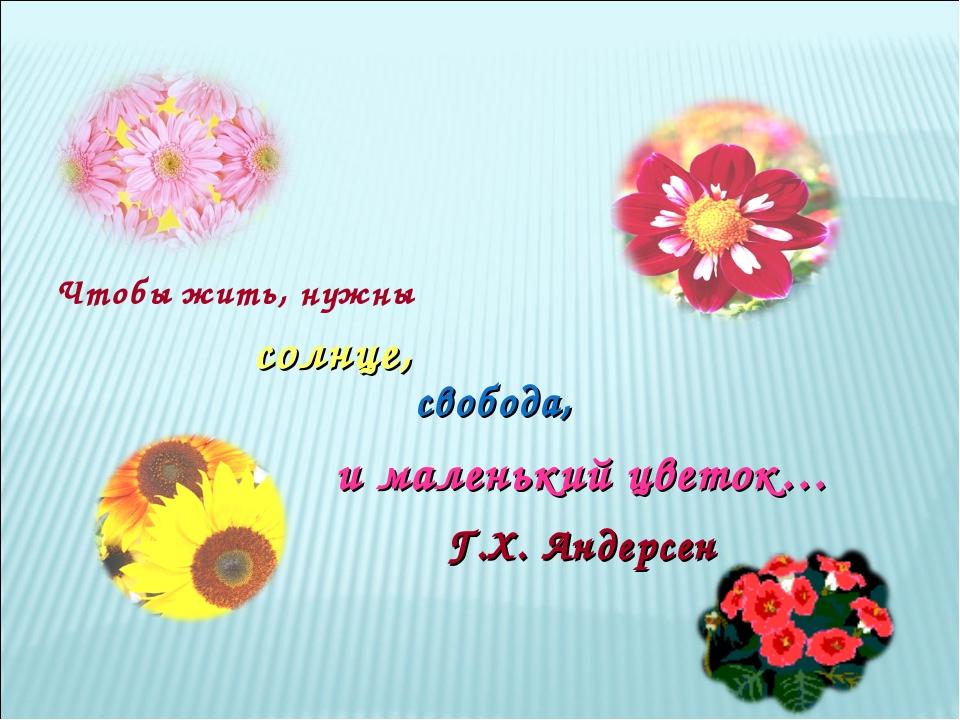Чтобы жить, нужны и маленький цветок… свобода, солнце, Г.Х. Андерсен