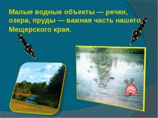 Малые водные объекты — речки, озера, пруды — важная часть нашего Мещерского к