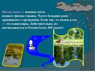 Малые реки — важная часть водного фонда страны. Часто большие реки сравнивают