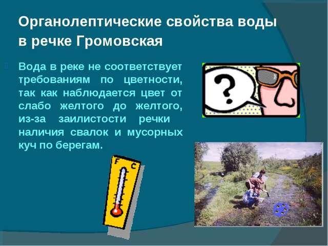 Органолептические свойства воды в речке Громовская Вода в реке не соответству...