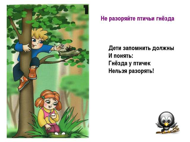 Не разоряйте птичьи гнёзда Дети запомнить должны И понять: Гнёзда у птичек Н...