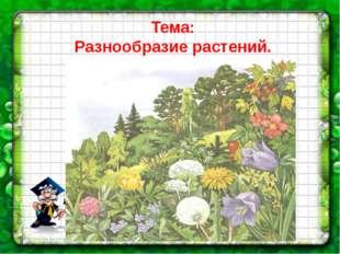 Тема: Разнообразие растений.