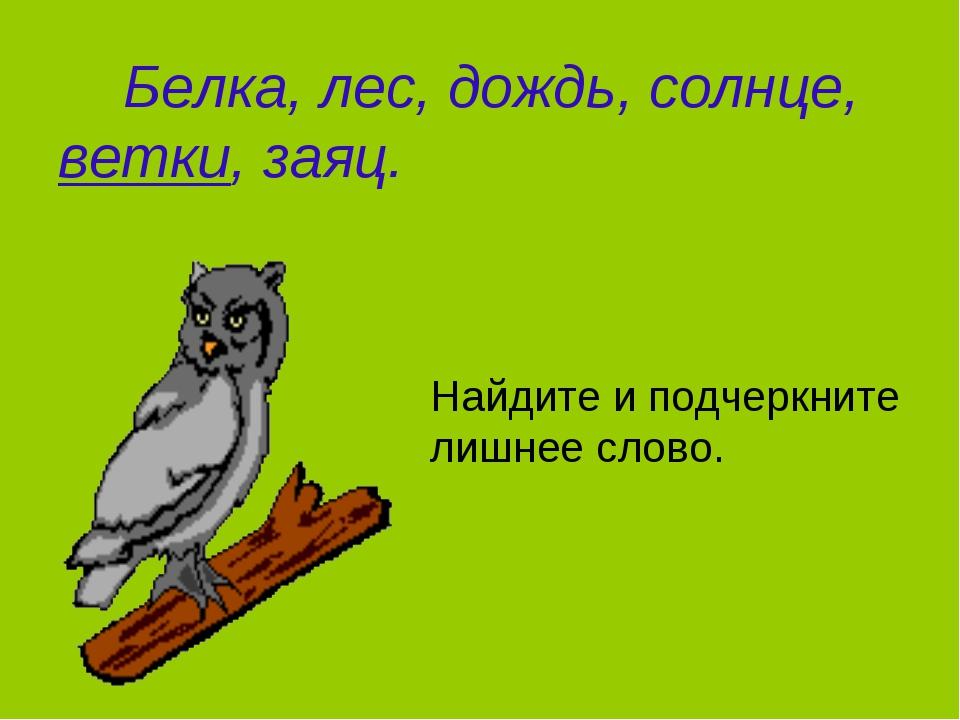 Белка, лес, дождь, солнце, ветки, заяц. Найдите и подчеркните лишнее слово.