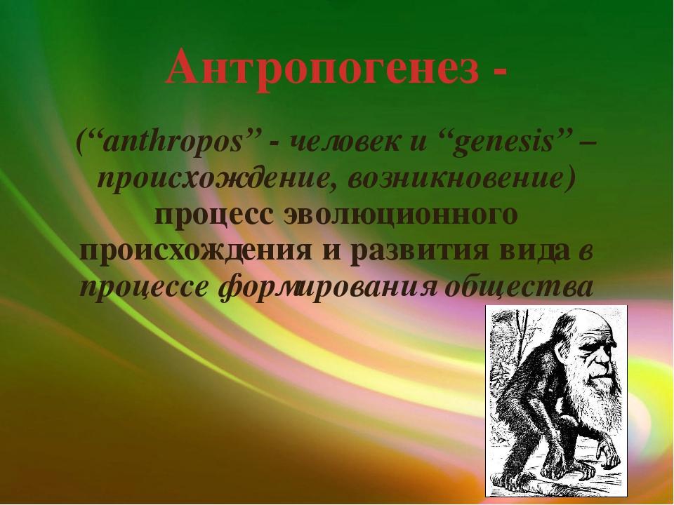 """Антропогенез - (""""anthropos"""" - человек и """"genesis"""" – происхождение, возникнове..."""
